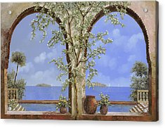 Fiori Bianchi Sulla Parete Acrylic Print by Guido Borelli