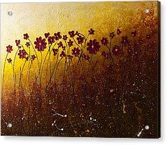 Fiori Di Campo Acrylic Print by Carmen Guedez