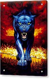 Fire Panther Acrylic Print by MGL Studio - Chris Hiett