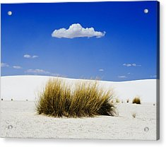 First Contact Acrylic Print by Skip Hunt