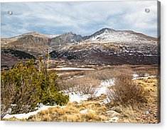 First Snow At Treeline Acrylic Print by Adam Pender