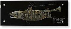 Fish Dx Acrylic Print by Vladimiras Nikonovas