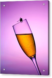 Fishing On A Cup Of Champange Little People On Food Acrylic Print by Paul Ge