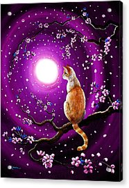 Flame Point Siamese Cat In Dancing Cherry Blossoms Acrylic Print by Laura Iverson