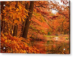 Flaming Leaves Acrylic Print by Lourry Legarde
