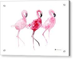 Flamingos Painting Watercolor Art Print Acrylic Print by Joanna Szmerdt