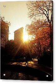 Flatiron Building Sunset - Madison Square Park Acrylic Print by Vivienne Gucwa