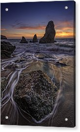 Fleeting Acrylic Print by Rick Berk