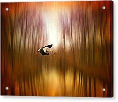 Flight Of Fancy Acrylic Print by Jessica Jenney