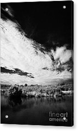 Flooded Grasslands And Mangrove Forest In The Florida Everglade Acrylic Print by Joe Fox