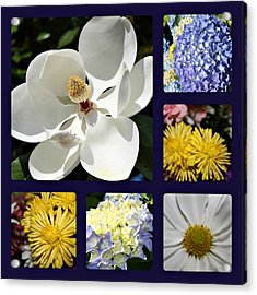 Floral Collage Acrylic Print by Carolyn Ricks