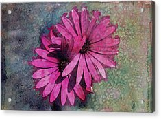 Floral Fiesta  Acrylic Print by Variance Collections