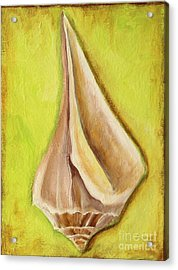 Florida Seashell Acrylic Print by Gabriela Valencia