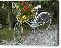 Flower Bike Acrylic Print by Graham Foulkes