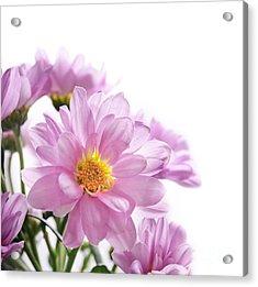Flower Bouquet Acrylic Print by Jelena Jovanovic