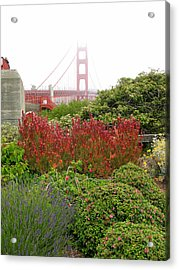 Flower Garden At The Golden Gate Bridge Acrylic Print by Connie Fox