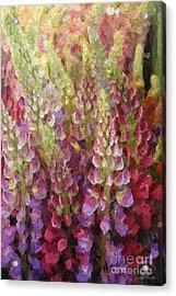 Flower Garden Acrylic Print by Linda Woods