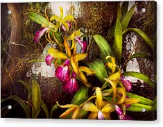 Flower - Orchid - Cattleya - There's Something About Orchids  Acrylic Print by Mike Savad