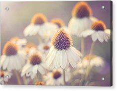 Flowerchild Acrylic Print by Amy Tyler