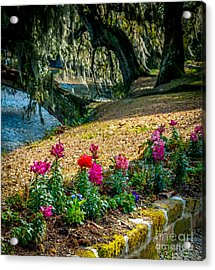 Flowered Pathway Acrylic Print by Optical Playground By MP Ray