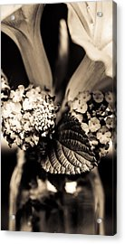 Flowers In A Jar Acrylic Print by Marco Oliveira