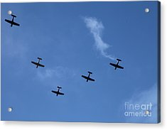 Fly Bye Acrylic Print by Graham Foulkes