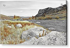 Fly Fishing Stillwater River Montana Selective Color Acrylic Print by Jennie Marie Schell
