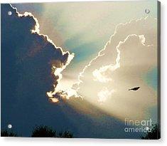 Flying In Heavens Light Acrylic Print by Judy Via-Wolff