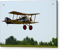 Flying Rc Acrylic Print by Thomas Young