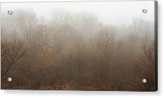 Fog Riverside Park Acrylic Print by Scott Norris