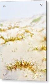 Fog Sand And Dune Grass - Outer Banks Acrylic Print by Dan Carmichael