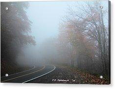 Foggy Autumn Day Acrylic Print by Carolyn Postelwait