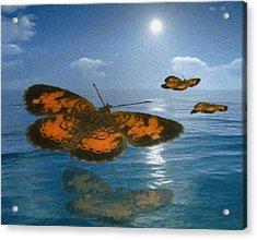 Follow The Sun Acrylic Print by Jack Zulli