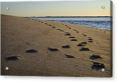 Follow Your Path Acrylic Print by Luke Moore