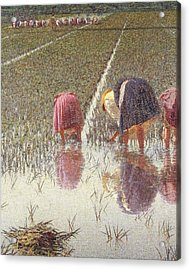 For Eighty Pennies Acrylic Print by Angelo Morbelli