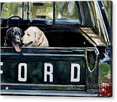 For Our Retriever Dogs Acrylic Print by Molly Poole