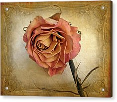 For You Acrylic Print by Jessica Jenney