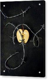 Forbidden Fruit Acrylic Print by Joana Kruse