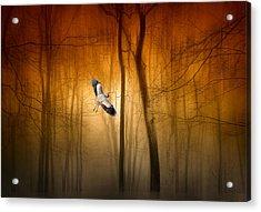 Forest Flight Acrylic Print by Jessica Jenney