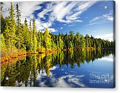 Forest Reflecting In Lake Acrylic Print by Elena Elisseeva