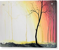 Forest Sunset Acrylic Print by Denisa Laura Doltu