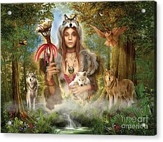 Forest Wolves Acrylic Print by Ciro Marchetti