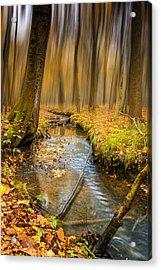 Forever Autumn Acrylic Print by Ian Hufton