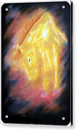 Forged In Fires Acrylic Print by Mark Schutter