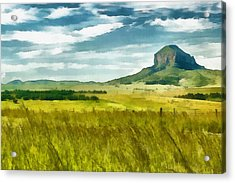 Forgotten Fields Acrylic Print by Ayse Deniz