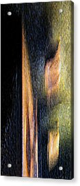 Form And Shadow Acrylic Print by Murray Bloom