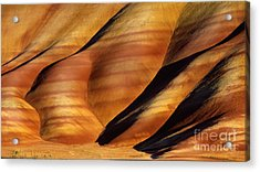 Fossilscape Acrylic Print by Inge Johnsson