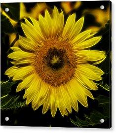 Fractal Flower IIi Acrylic Print by Christian Skilbeck