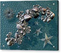 Fractal Sea Life Acrylic Print by Manny Lorenzo