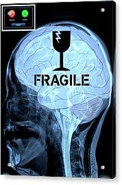 Fragile Substance Acrylic Print by Paulo Zerbato